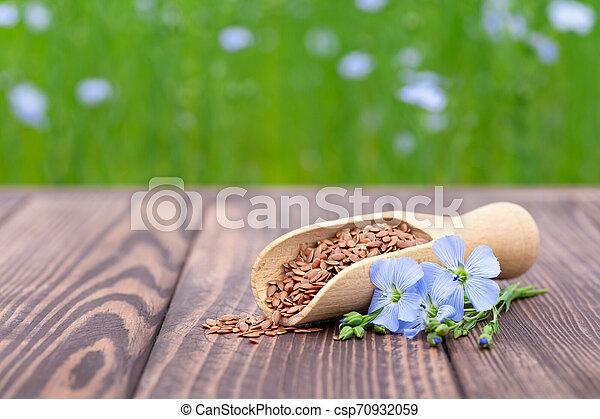 flax seeds in scoop - csp70932059