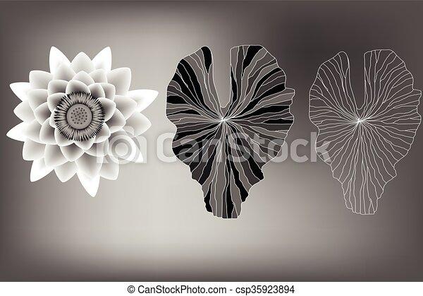 Fleur éléments Lotus Feuilles Noir Blanc