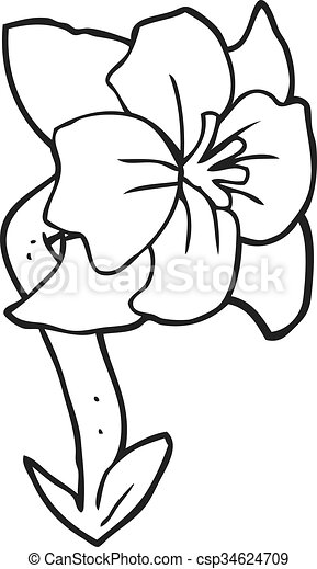 Fleur Blanche Noir Dessin Animé