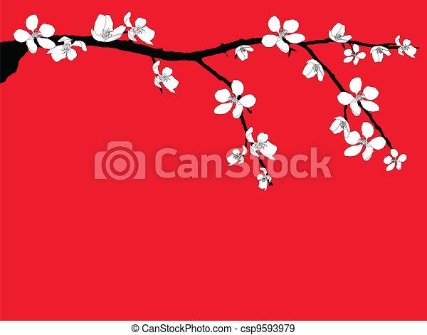 fleur, branche, cerise, beau - csp9593979