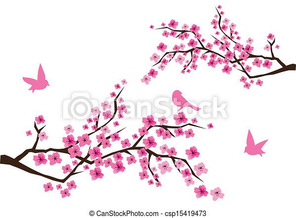 fleur, cerise - csp15419473
