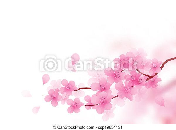 fleur, cerise, vecteur, branche - csp19654131
