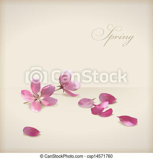 fleur, cerise, vecteur, conception, printemps, floral, fleurs - csp14571760