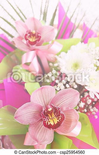 fleur, composition, phalaenopsis - csp25954560