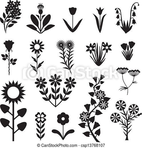 fleur, ensemble - csp13768107