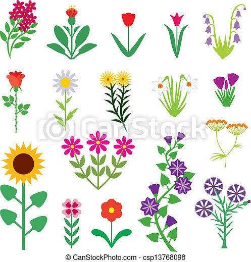 fleur, ensemble - csp13768098