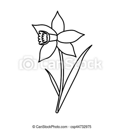Fleur feuille jonquille ligne mince fleur 10 fleur - Dessin jonquille fleur ...