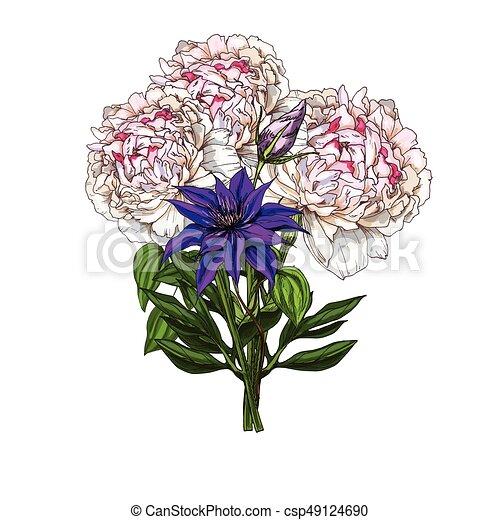 Fleur Illustration Pivoine Champ Bouquet Isolé Main Arrière Plan Vecteur Sauvage Dessiné Blanc Botanique