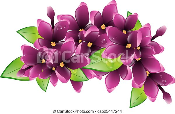 Fleur Lilas Printemps Illustration Branche Mouille