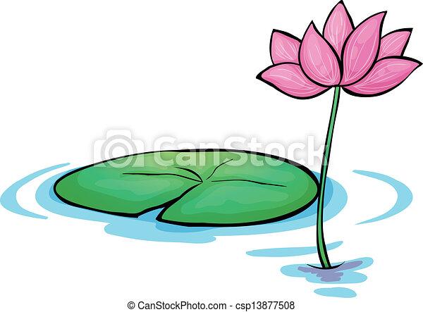 Fleur n nuphar fleur blanche n nuphar fond illustration - Nenuphar dessin ...