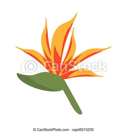 Fleur Oiseau Paradis 10 Fleur Eps Illustration Vecteur