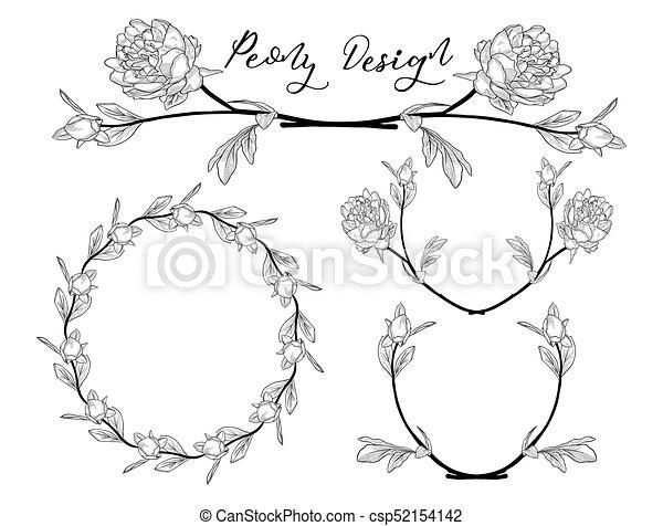 fleur, pivoine, cadre, couronne, vecteur, diviseur, design. - csp52154142