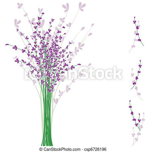 fleur pourpre, lavande, été - csp6726196