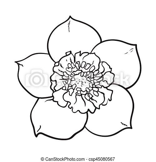 Fleur Rose Ellebore Noel Unique Vue Dessus Noel Croquis