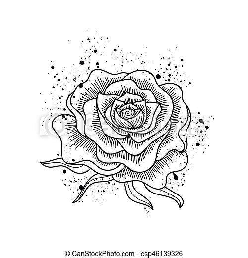 Fleur Rose Isole Vecteur Noir Blanc Art T Shirts Sacs