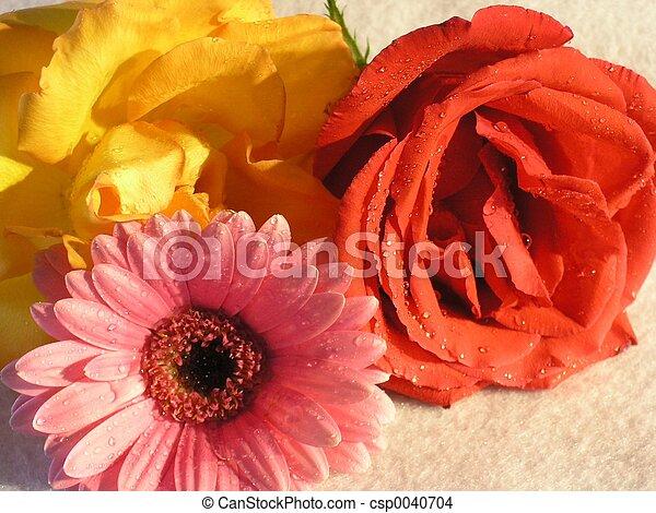 fleurs, 01 - csp0040704