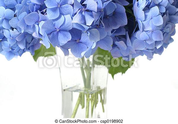 fleurs, baldaquin - csp0198902