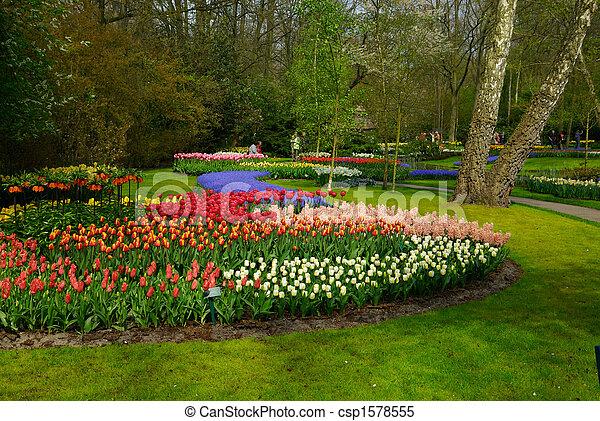 fleurs, coloré, printemps - csp1578555