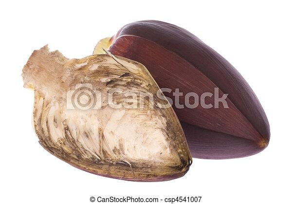 Fleurs Comestible Banane Comestible Image Isole Contre