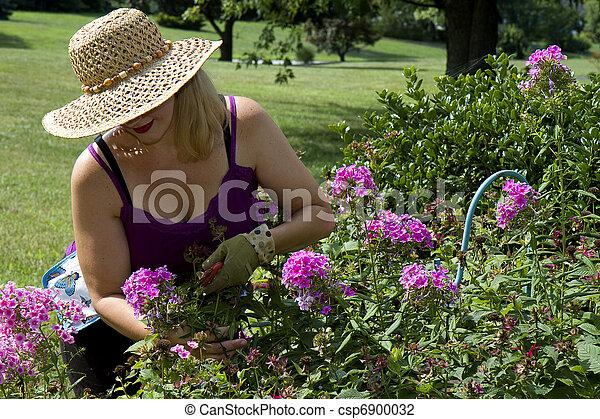 fleurs, dame, taille - csp6900032