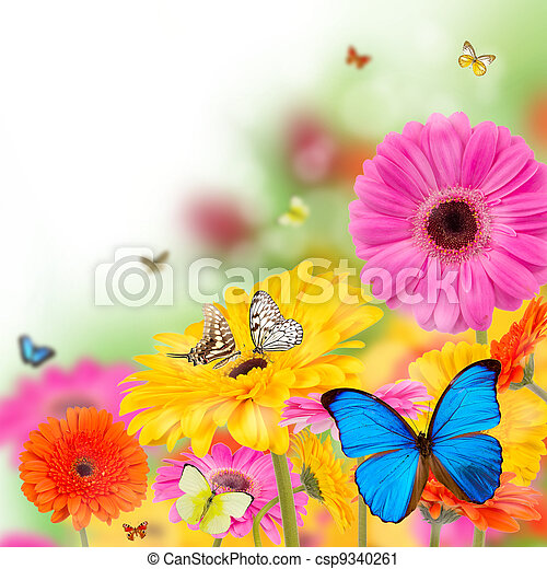 fleurs, fleurir - csp9340261