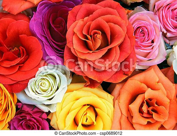 fleurs, fond - csp0689012