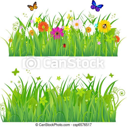 fleurs, herbe, insectes, vert - csp6576517
