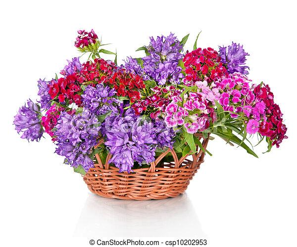 fleurs, panier, isolé, bouquet, beau, blanc - csp10202953