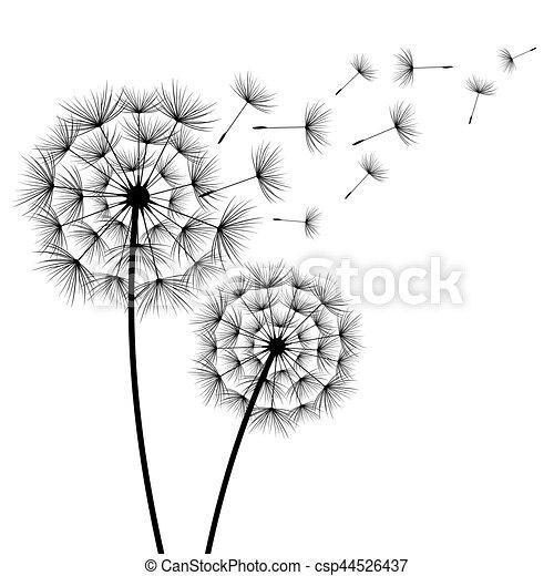 Fleurs Pissenlits Silhouette Deux Beau Ete Printemps Moderne