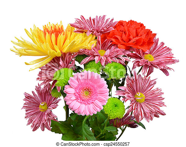 fleurs ressort - csp24550257