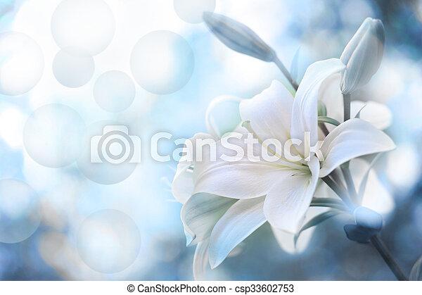 fleurs ressort - csp33602753