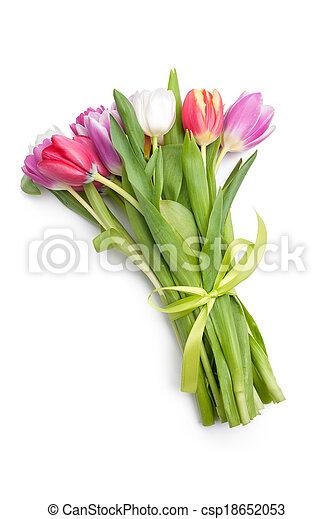 fleurs ressort, posy, tulipes - csp18652053