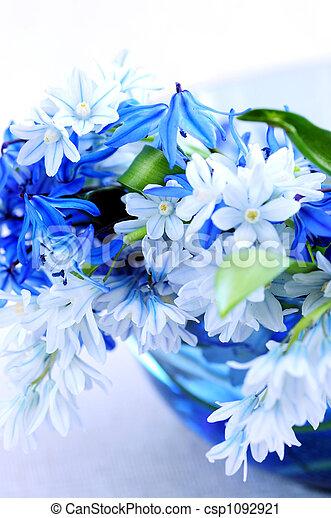 fleurs ressort, premier - csp1092921