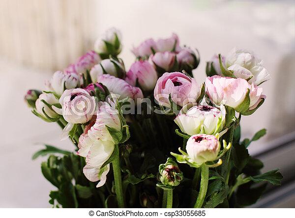 fleurs ressort, premier - csp33055685