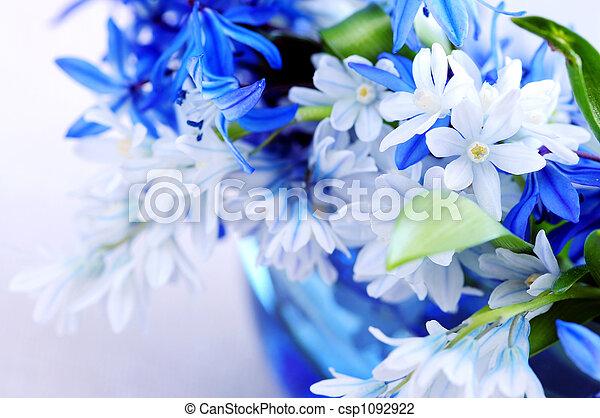 fleurs ressort, premier - csp1092922