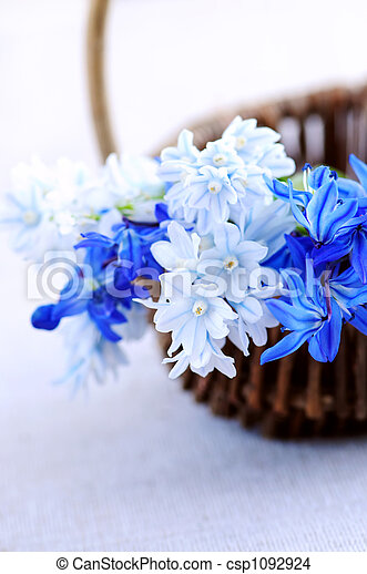 fleurs ressort, premier - csp1092924