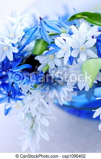 fleurs ressort, premier - csp1095402
