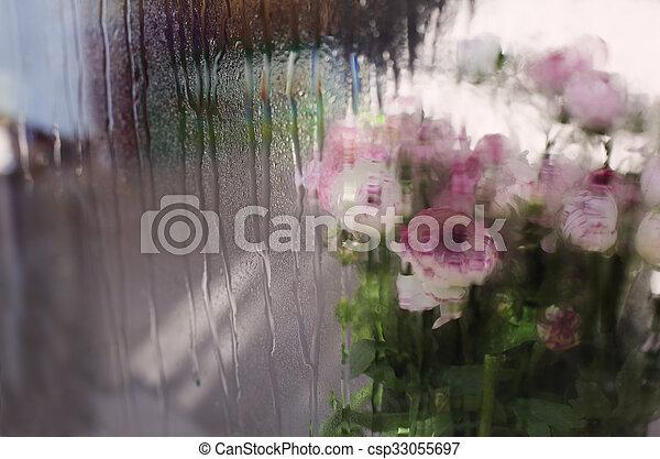 fleurs ressort, premier - csp33055697
