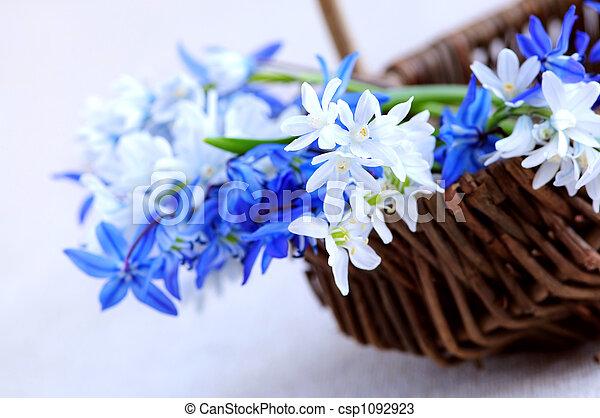 fleurs ressort, premier - csp1092923