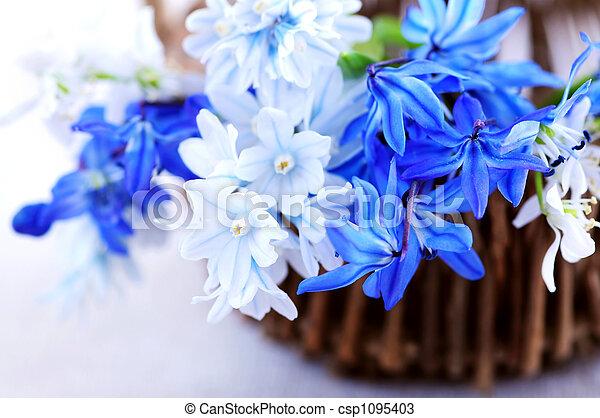 fleurs ressort, premier - csp1095403