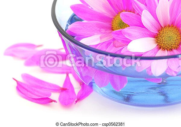 fleurs roses - csp0562381