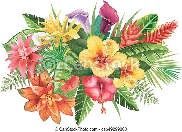Fleurs tropicales arrangement exotique feuilles fleurs arrangement - Dessin hibiscus ...