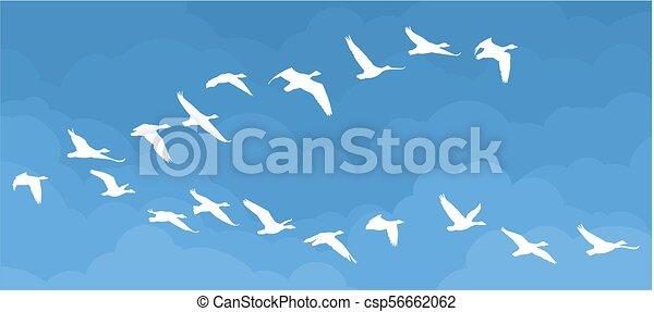 Flight of birds in the sky. - csp56662062