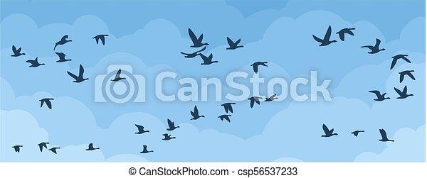 Flight of birds in the sky. - csp56537233