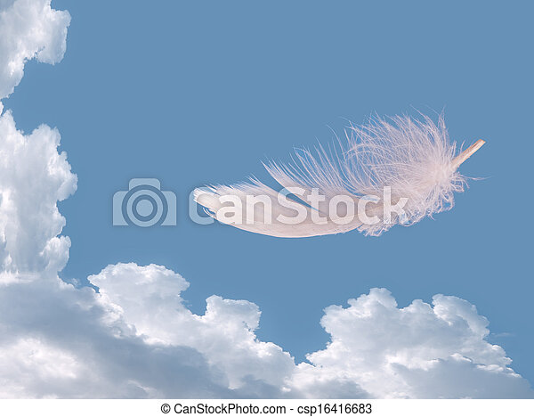 Floating feather over sky - lightness, freedom concept - csp16416683
