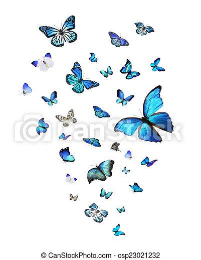 Butterflies Spring Stock Illustrations – 34,131 Butterflies Spring Stock  Illustrations, Vectors & Clipart - Dreamstime
