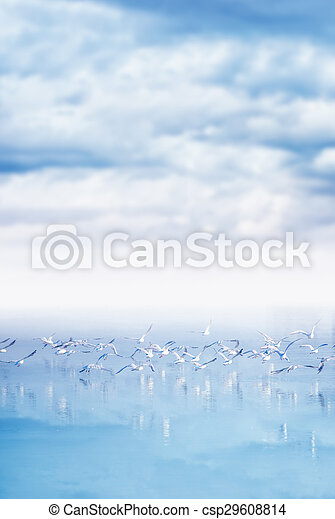 Flock of seagulls flying over lake - csp29608814