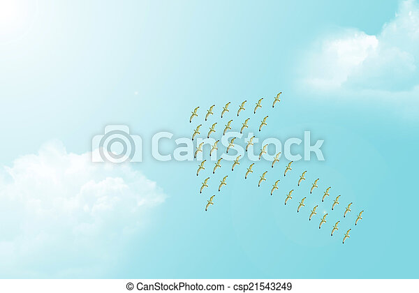Flock of Seagulls forming Arrow Symbol - csp21543249