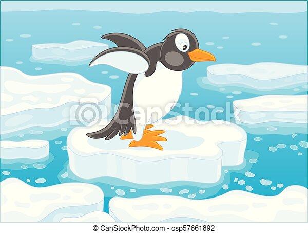 Pingüino en un témpano de hielo - csp57661892