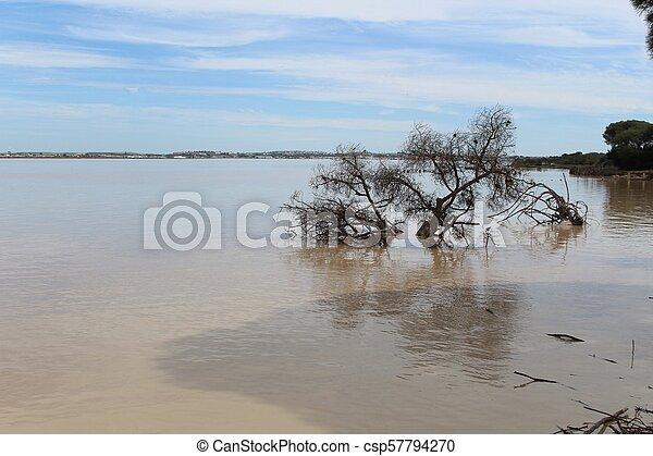 Flooding River - csp57794270